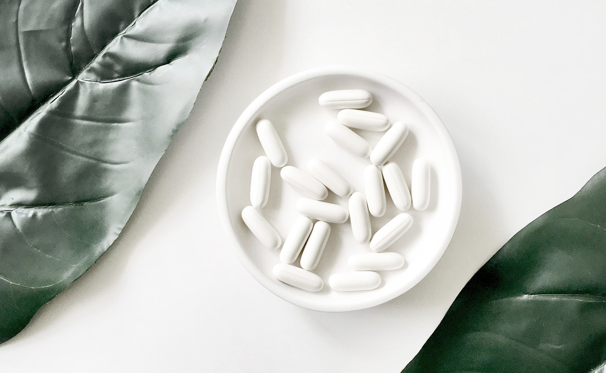 What are the Benefits of Probiotics?