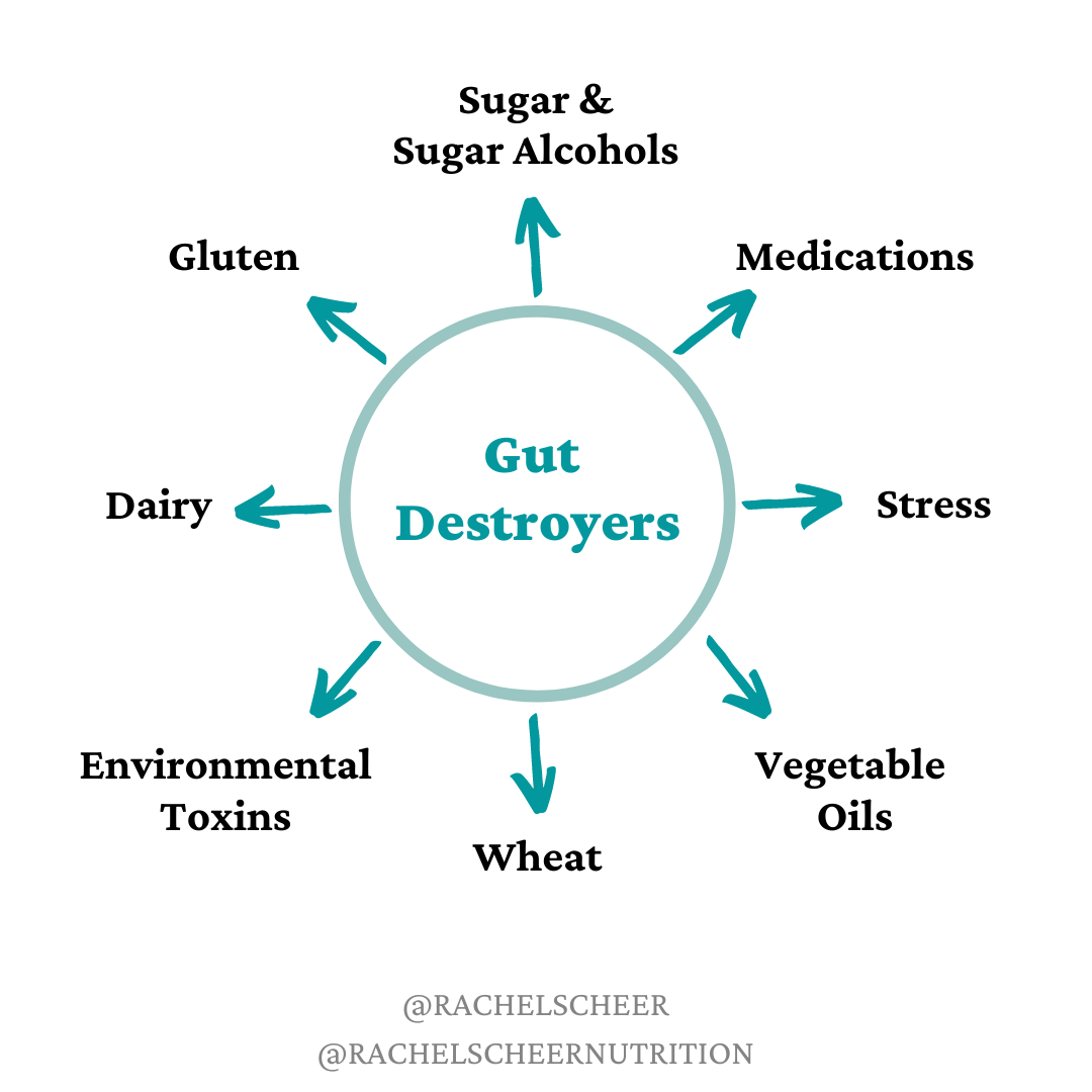What is Destroying your Gut?